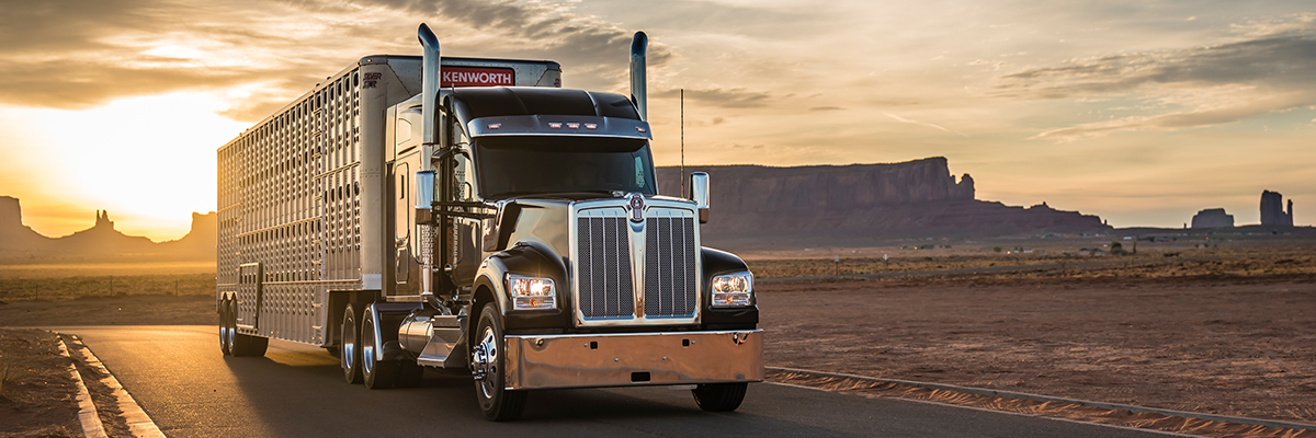 Kenworth W990 parked in the desert with sunset in the background